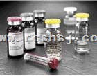 α-半乳糖苷酶/α-D-半乳糖苷半乳糖水解酶/α-Galactosidase preparation