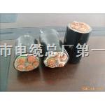 WDZ-RYY低烟无卤阻燃软电缆