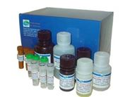 3% NaC1鸟氨酸脱羧酶发酵管