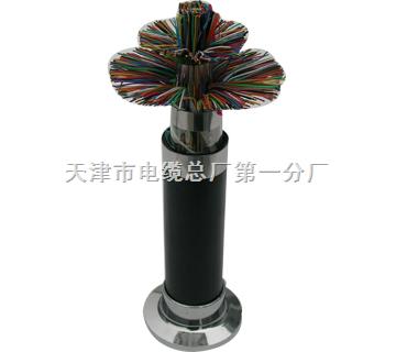 低烟无卤通信电缆_WDZ-HYA/WDZ-HYA23