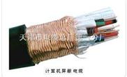 IA-DJYPV?P-10*2*0.75-耐高温耐酸耐碱计算机电缆