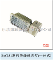 BAT51防爆投光灯(一体式)