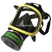 防毒全面罩/呼吸器面罩 /防毒面具