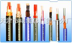 耐火计算机屏蔽电缆型号NH—DJYPVP