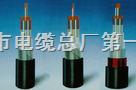28芯铁路信号电缆PTYV; PTYY;