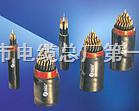 PTYAH-4*1.0多芯信号电缆规格