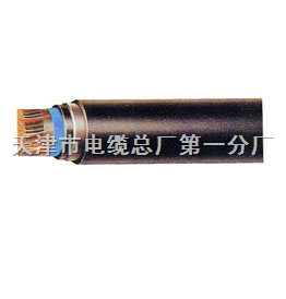 铠装电话电缆HYA23通信电缆