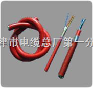 KFVP屏蔽型耐高温电线电缆KFVP-8*0.75