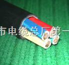 ZA-RVV电源通信电缆参数