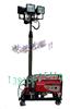 升降灯 自动升降灯 DSL-2000 全方位 移动照明灯组