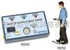 DESCO19252DESCO19252人体综合测试仪多少钱一台